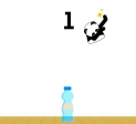 Play Bottle Flip 2 free