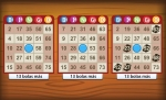 Play Bingo Gamepoint free
