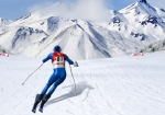Game Downhill Ski