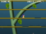 Play Jungle Escape free