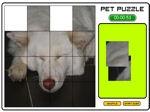 Game Pet Puzzle