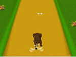 Play Dog Dash free