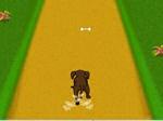 Game Dog Dash