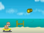 Play Maxim's Seaside Adventure free