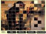 Play Mega Puzzle free