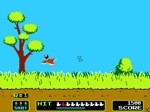 Play Duck Hunt free