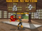 Play Bushido Fighters free