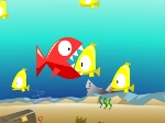 Play Fish-eat-fish free