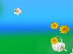 Play Flower Collector free