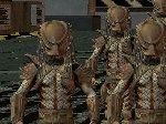 Play Alien vs Predator free