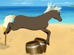 Play Palace of Horses free