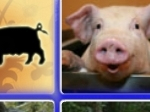 Play Happy Pigs Matching Game free