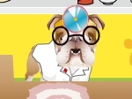 Play Dr. Bulldog's Pets Hospital free