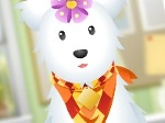 Play Pet Beauty Saloon free