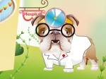 Play Dr.Bulldog's Pet Hospital free