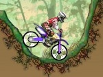 Play Dirt Bike Championship free