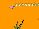 Play Dolphin Dash free