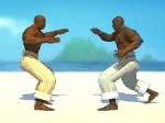 Play Capoeira Fighters free