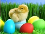 Play Easter Egg Puzzle free
