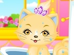 Play Lovely Princess Cat free