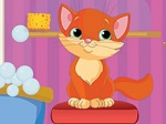 Play Mara and the Kitties free
