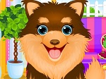 Play Adopted Puppy Makeover free