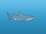 Play Hungry Shark Evolution free