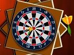 Play Darts 501 free